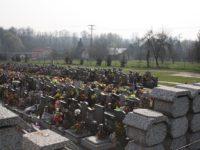 Rozšíření hřbitova Havířov Šumbark Ridera Stavební